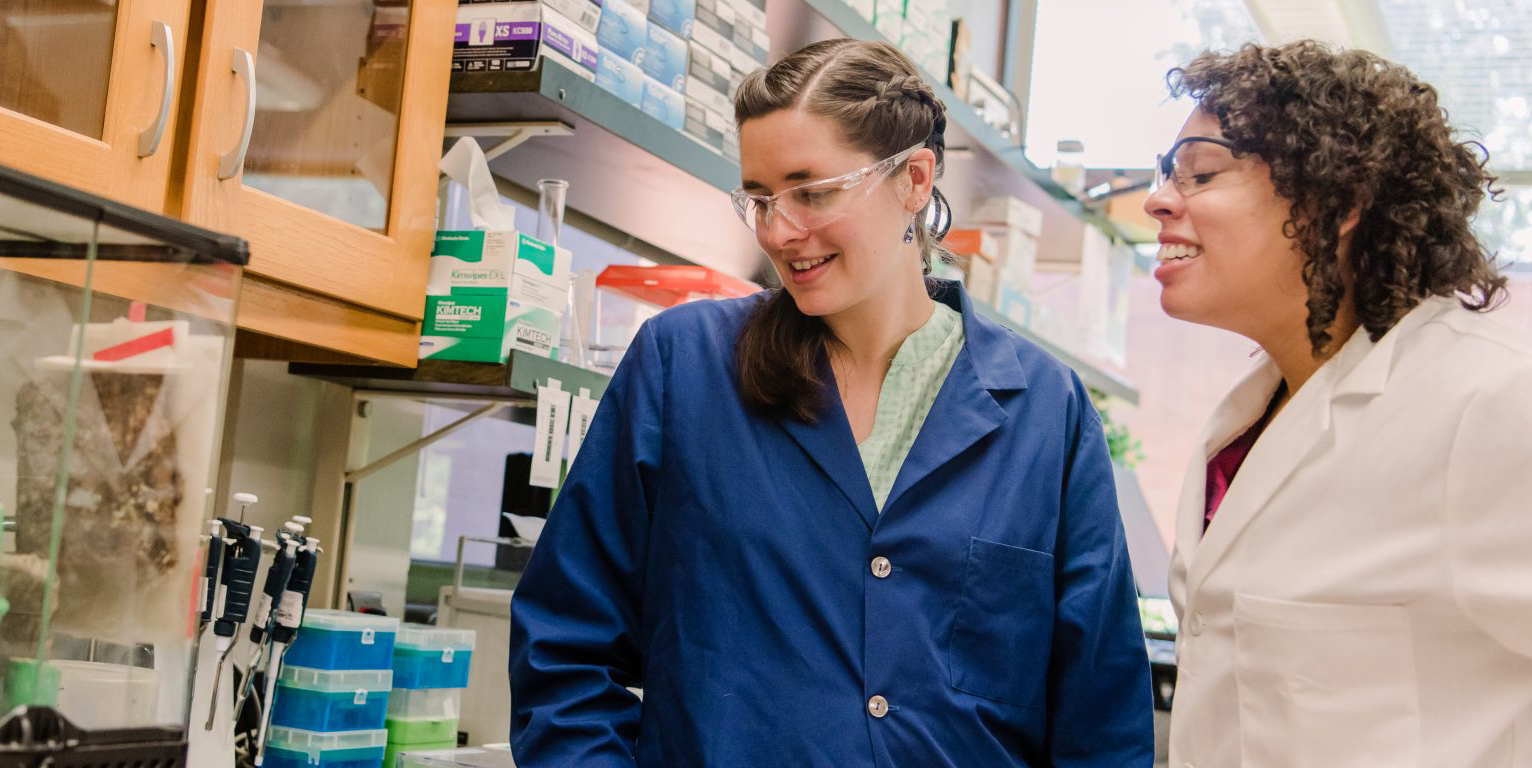 UMBC's Sarah Stellwagen first in world to sequence genes for spider glue